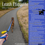 Printable dog leash safety and etiquette flyer.